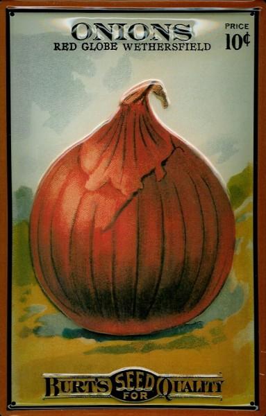Blechschild Onions Zwiebel Gemüse Schild Küchendekoration Deko