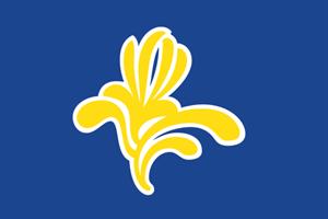 Flagge Fahne : Brüssel (Region) Bruxelles Belgien