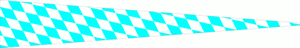 Langwimpel Bayern Raute kariert 30x150 cm