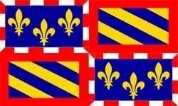 Flagge Fahne : Burgund (Region) Frankreich