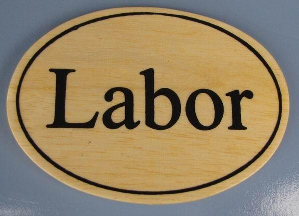 Ovales Holz - Türschild Labor 7x10 cm helles Holzschild