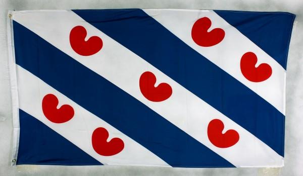 Flagge Fahne : Friesland Niederlande