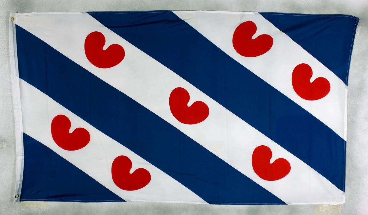 Flagge Niederlande Friesland 90 x 150 cm