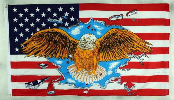 Flagge Fahne : USA / Adler