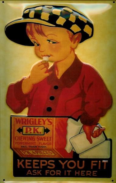 Blechschild Wrigley s Kaugummi Junge retro Schild Reklame Nostalgieschild