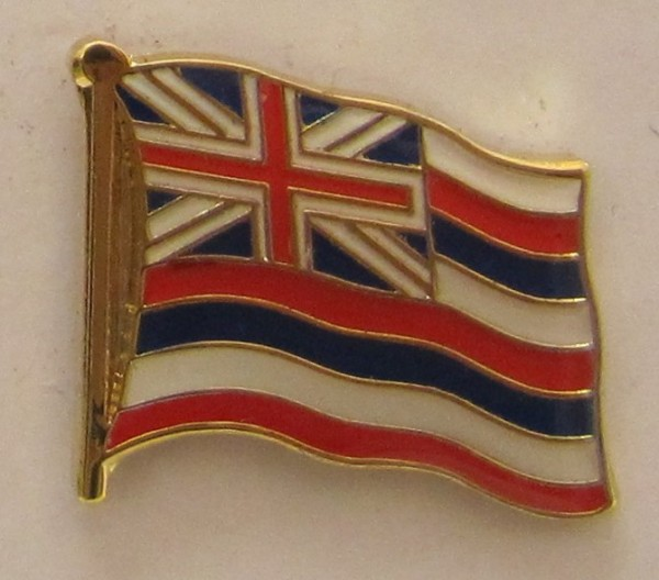 Hawaii Pin Anstecker Flagge Fahne Nationalflagge