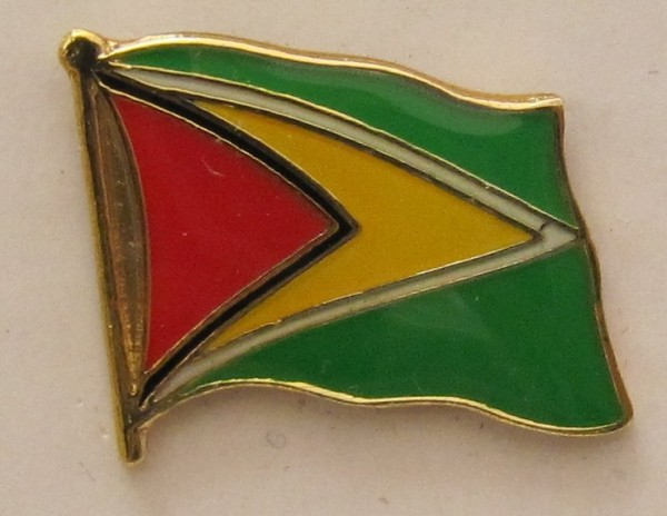 Guyana Pin Anstecker Flagge Fahne Nationalflagge