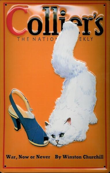 Blechschild Nostalgieschild Collier's Katze War now or never